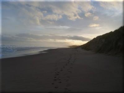Balmedie Beach