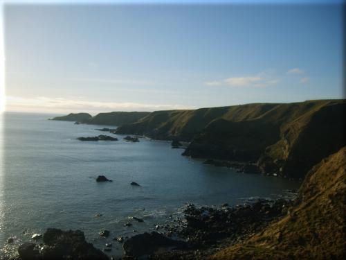 Collieston Cliffs