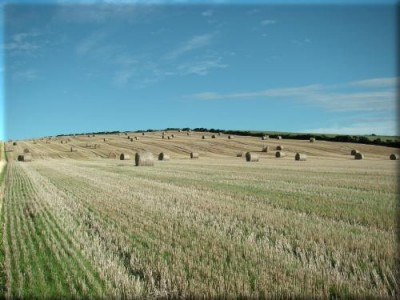 Hill of Ardgrain