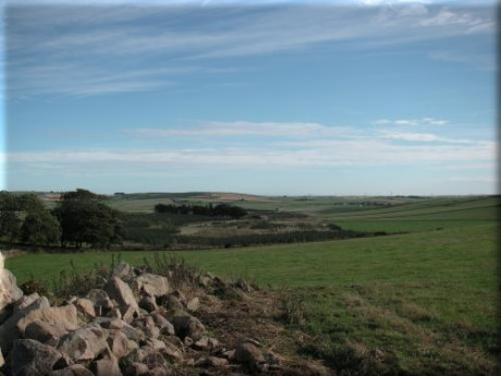 Ellon Countryside