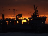 Peterhead Harbour at Sunrise