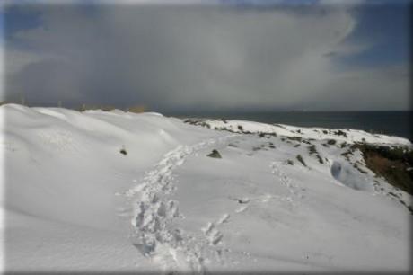 Portlethen Cliffs, Aberdeenshire
