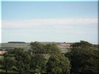 Ellon Hills